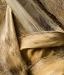 Douglas Wolters, Palm Textures No. 1