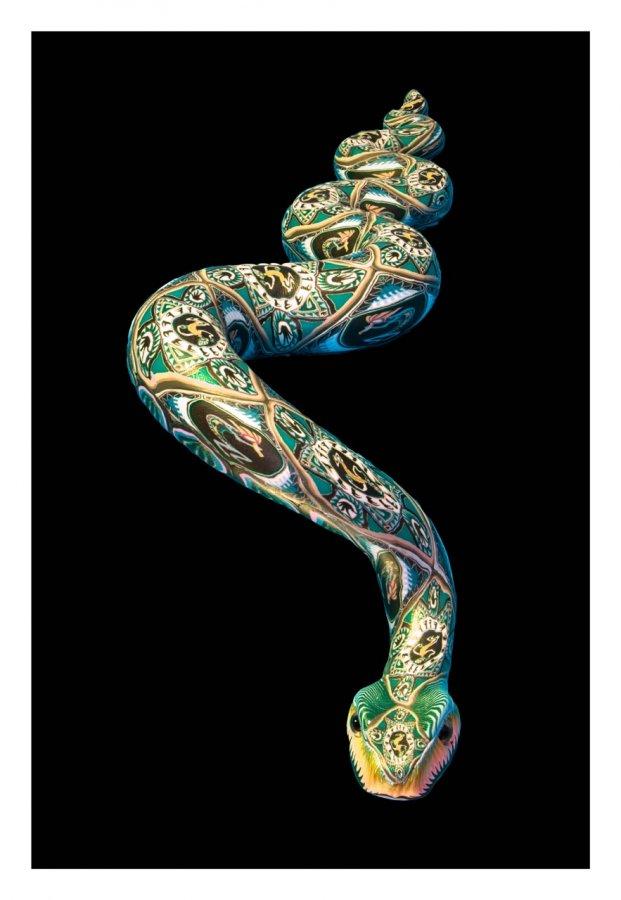 Advanced Print ~ 2nd Place ~ David Blass ~ The Spirit of the Serpent