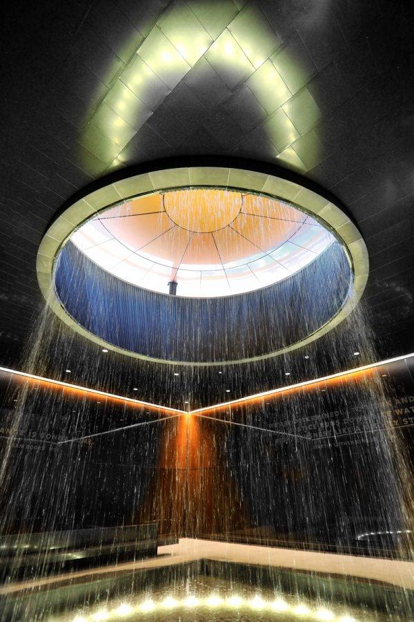 Advanced Print ~ Nick Williams ~ Raining Hope