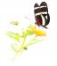 Novice Print ~ Oliver Morton ~ Butterfly Against White Background