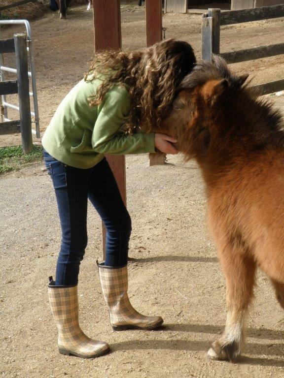 Open ~ Novice Projected ~ Karen Carkhuff ~ I Love my Little Pony