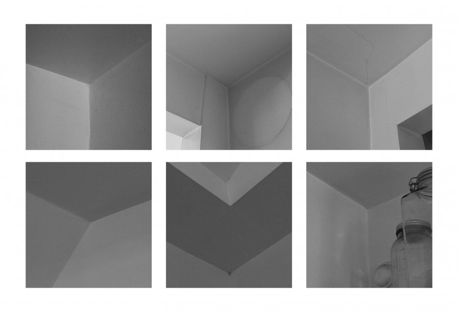 Novice Prints ~ Tanya Riseman ~ Cornered