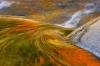 Angelique Raptakis - Autumn Reflected