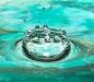 Davis Blass - Neptune\'s Crown