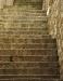 Michael Koren - Cat on Steps