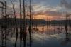 Beth Echols, Black Bayou Sunrise