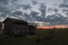 Beth Echols, Sunset at Joe\'s