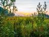 David Terao, Sunrise on the Illinois Prairie