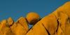 Jean Pierre Ple, Rocks, Joshua Tree National Park
