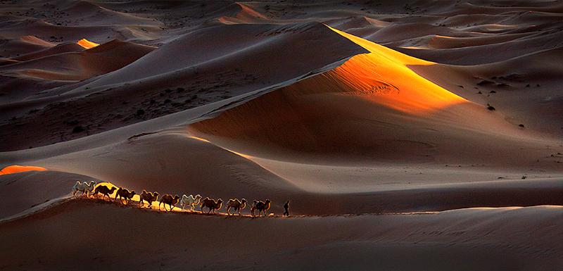 Henry Ng, Journey in Desert Light